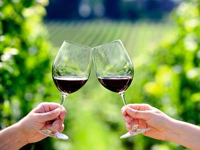 Two glasses of red wine being held by two hands, to a backdrop of countryside