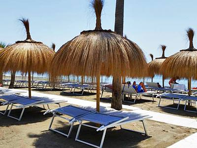 Various sun beds set under thatched parasols, laid out on a beach