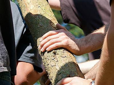 Men touching a big log