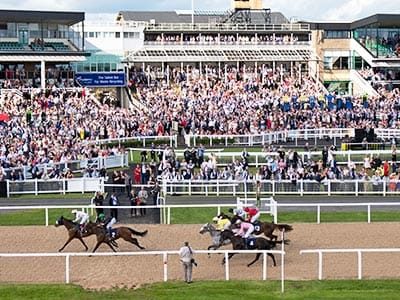 A group of horses racing past the finishing line on a grass racetrack