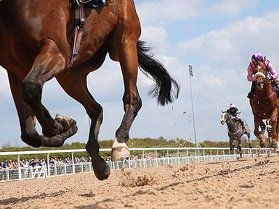 Horses and jockeys racing down a dirt track