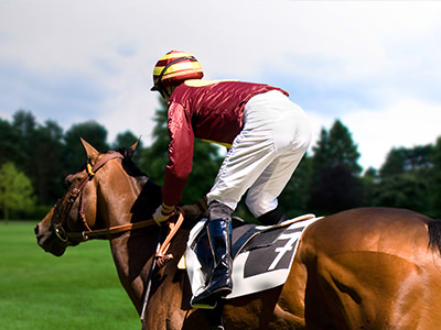 A jockey riding the horse away from the camera