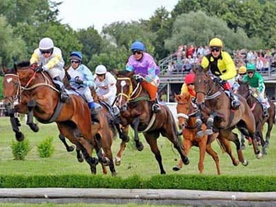 Jockeys horse racing and jumping over a hedge