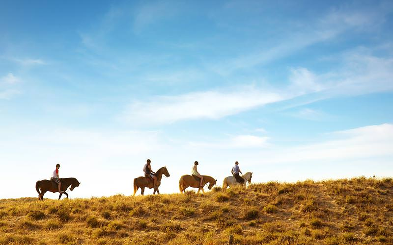 Four people riding horses up a grassy hilly