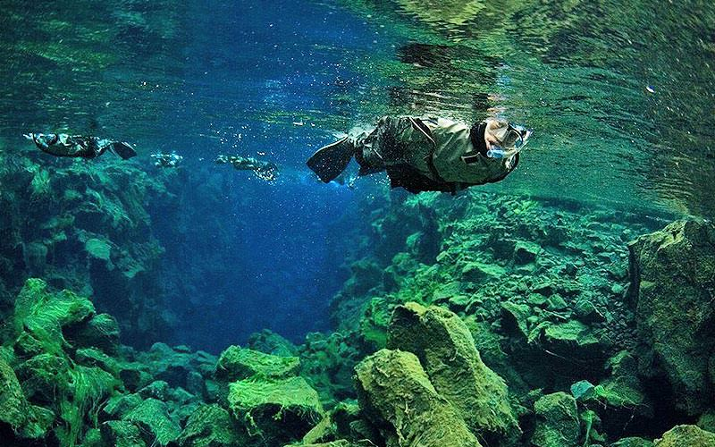 A man snorkelling