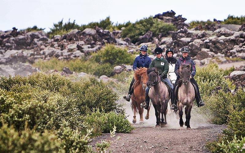 Four people riding horses outdoors
