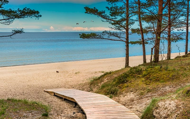 Image of a wooden walk way leading to Jurmala beach