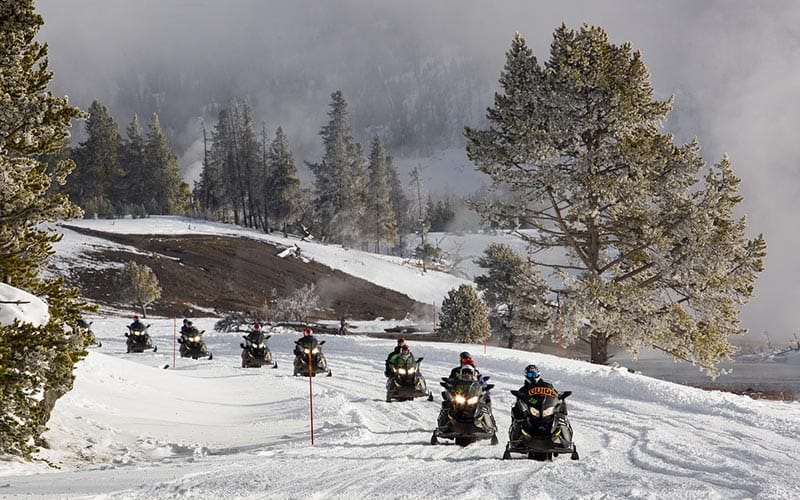 Image of a group out in the snow driving the snowmobiles