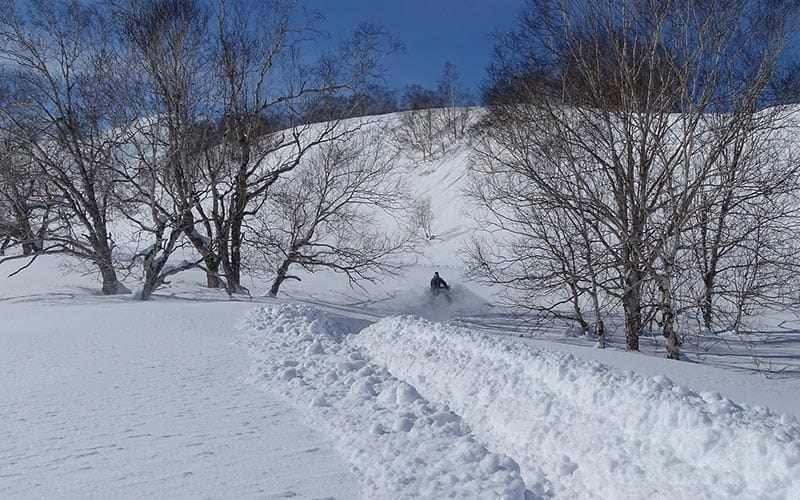 Image of a snowmobile driving through the snow beside trees