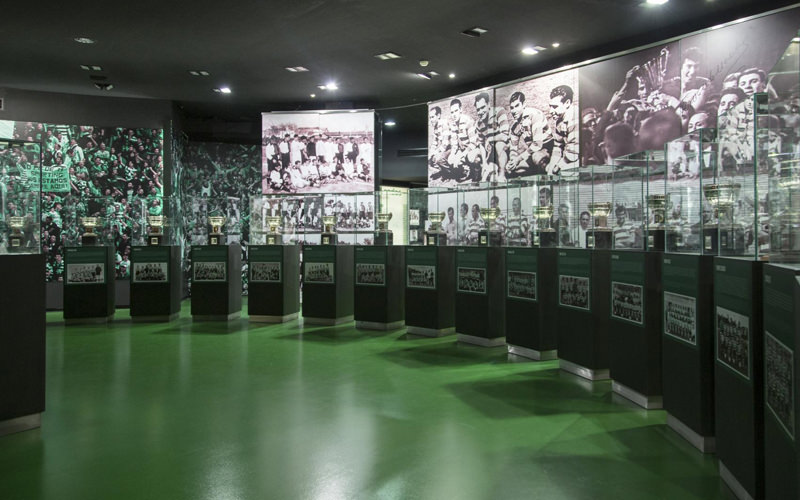 A row of trophies in a large green room with photographs of football players behind them