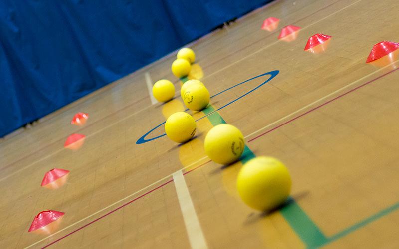 Several dodgeballs lined up on the floor of a gym