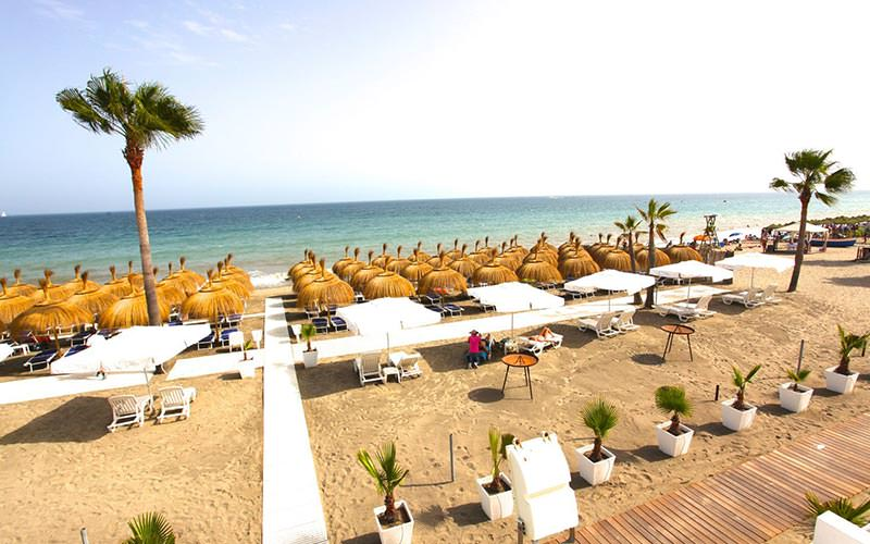 Sun beds under thatched canopies on a beach