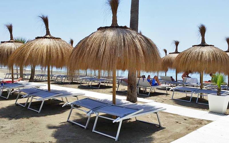 Sunbeds under thatched canopies