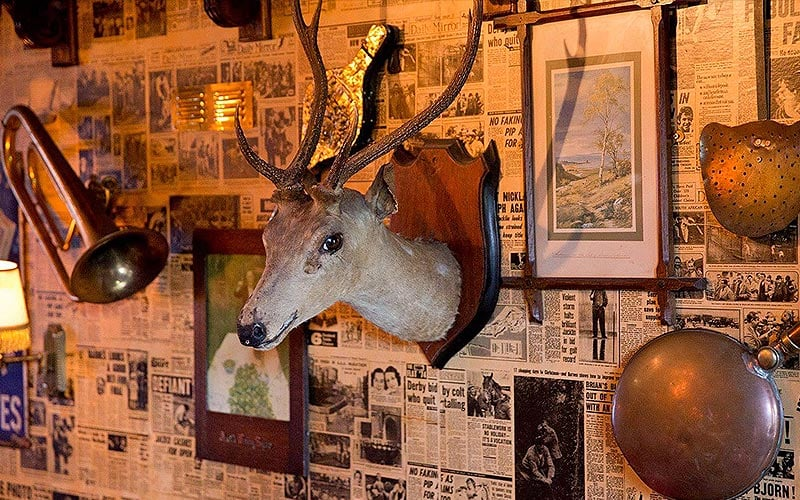 A stag's head mounted on a wall, along with other antiques