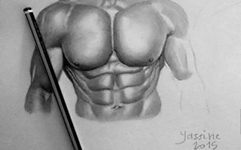 A sketch of a naked male model's torso