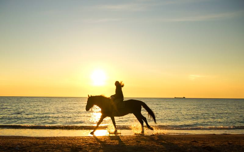 A silhouette of a woman riding a horse on the beach at sunset