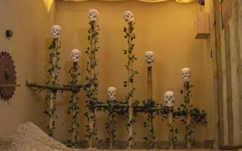 Some skulls on poles