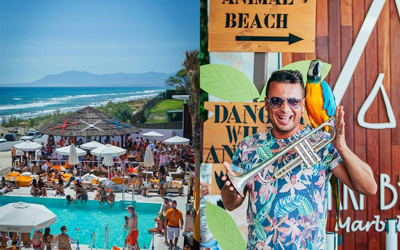 Split image of people stood around Nikki Beach, and a man posing with a parrot on his shoulder and holding a trumpet