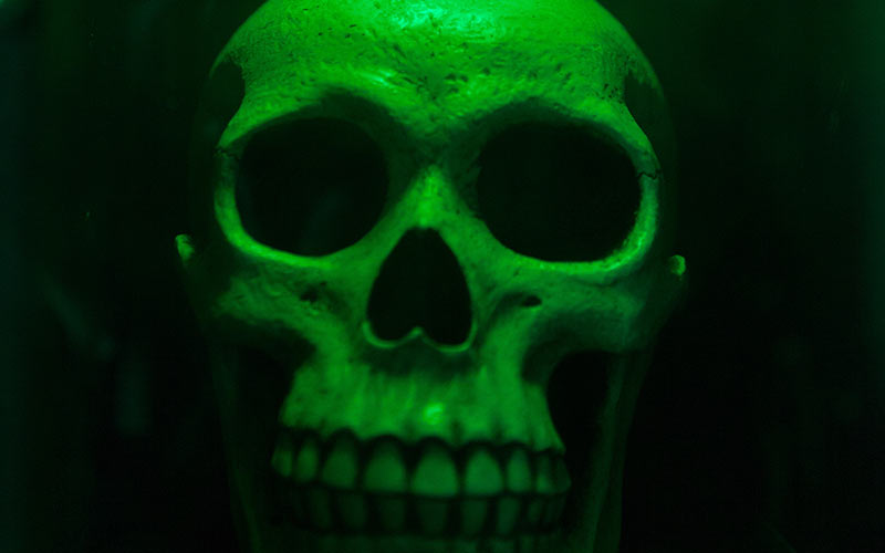 A green highlighted skull