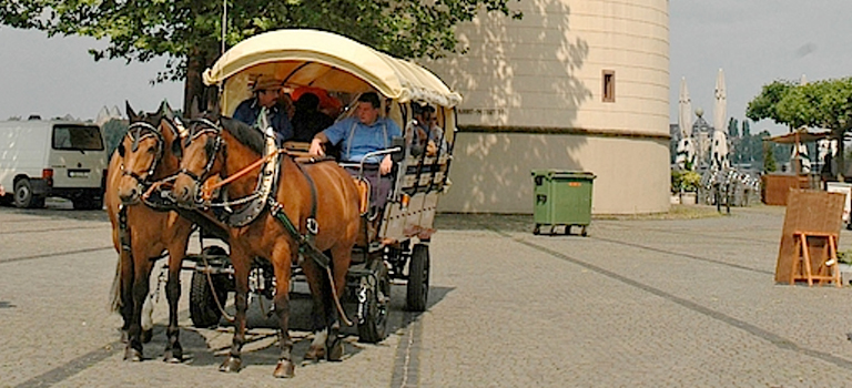 A horse pulling a cart in Dusseldorf on hen weekend