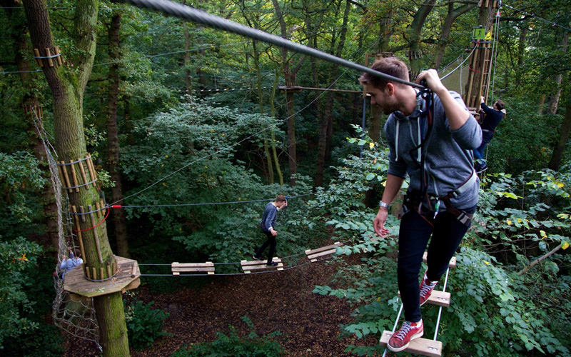 A group of stags doing Go Ape treetop adventure