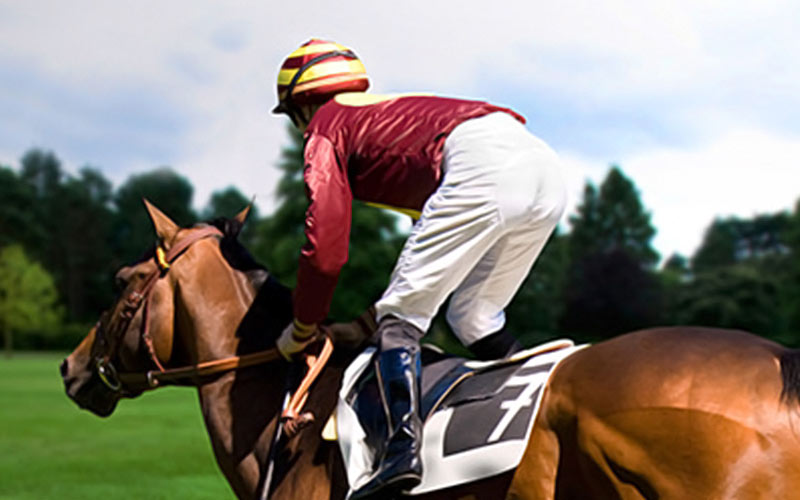 A jockey on a horse