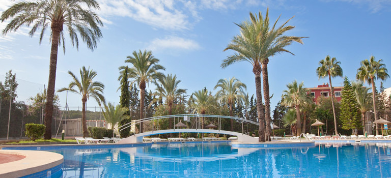 Some palm trees surrounding a swimming pool