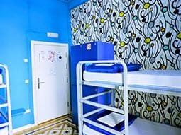 Close up of bunk beds in room