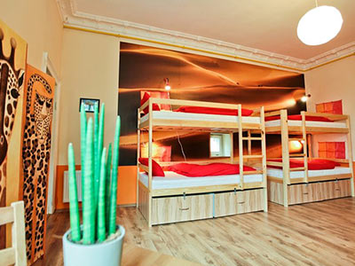 Four bunk beds on a wooden floor with a plastic cactus in the foreground