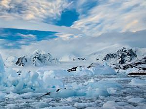 Arctic Lark-tics