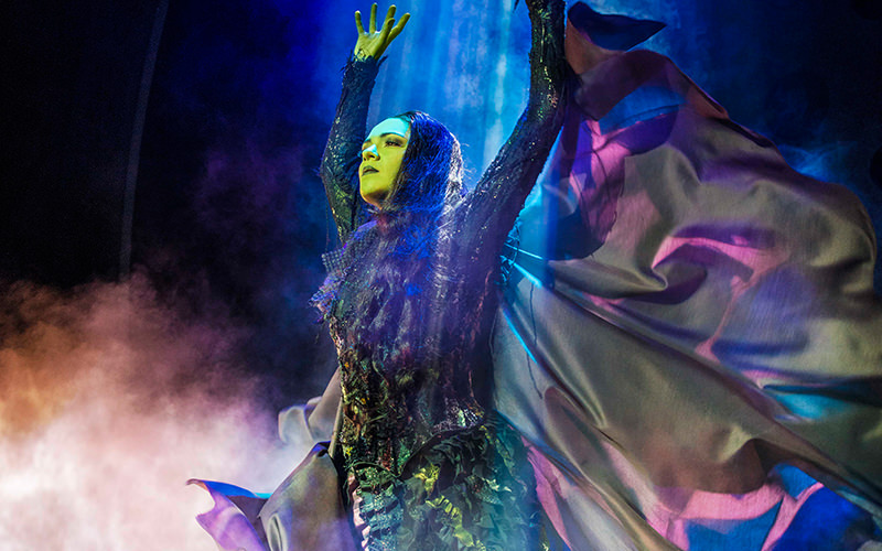 A wicked witch on stage in a black cloak, performing at Wicked the Musical