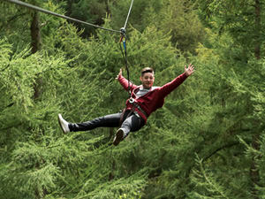 High Ropes Tree Top Adventure