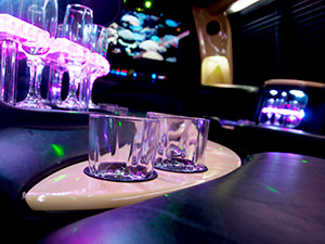 Private Party Bus -16 Seater