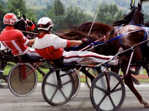 Spanish Horse Racing