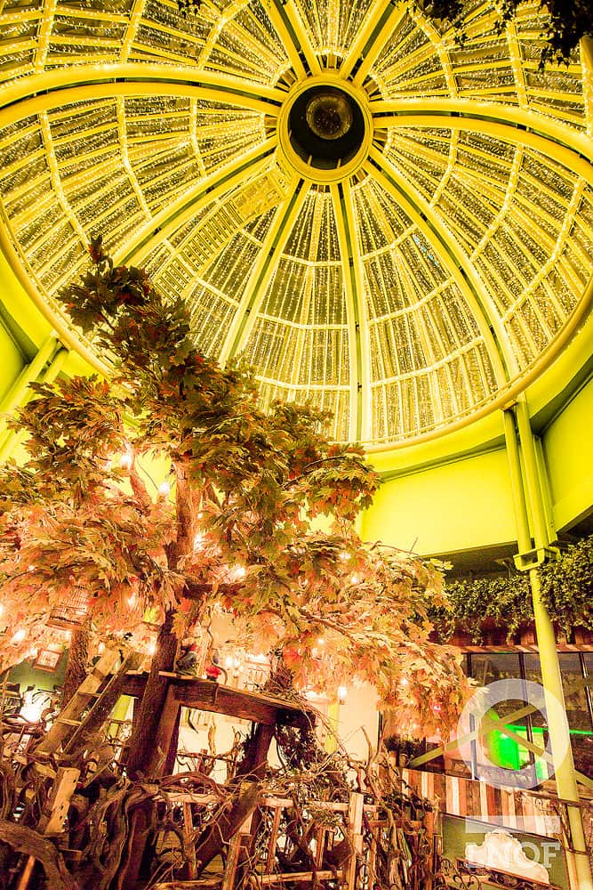 The dome at The Botanist in Newcastle