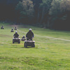 A stag group coming out of the woods on their quad bikes