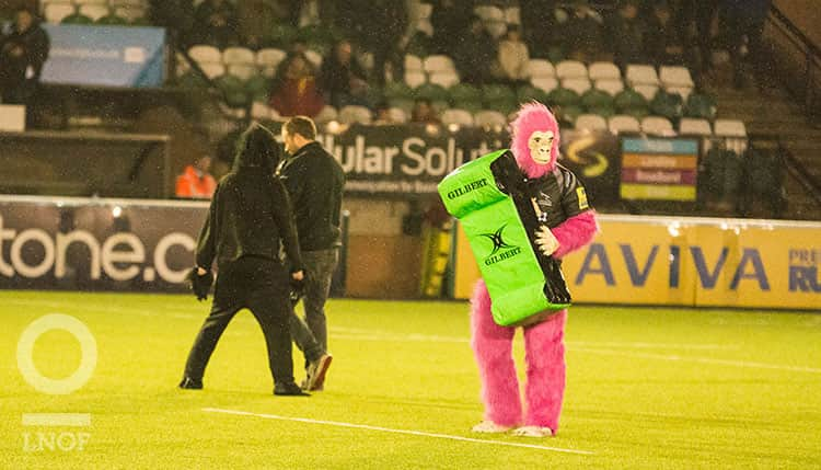 A man in a pink gorilla suit stood on a rugby pitch