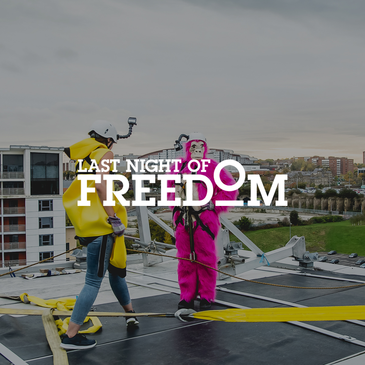 Last Night Of Freedom Login: Press Page And Media Resources