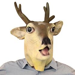 Oh deer!!!