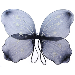 Black Wings With Silver Stars