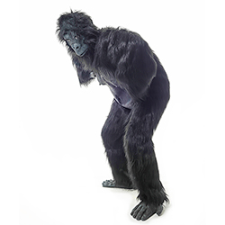 Full body Gorilla costume