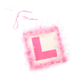 Pink Feather L Plate With Silver Tinsel