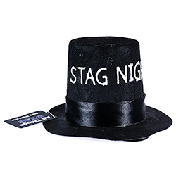 Model Wearing Mini Stag Night Top Hat