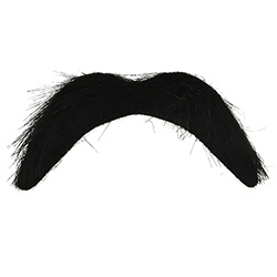 Thick Black Moustache On White Background
