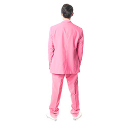 Back Of Mr Pink Opposuit back