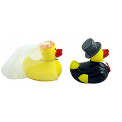 Mr and Mrs Duck Set On White Background