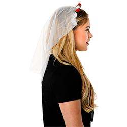 Veil and L Plate Set In Front Of White Background