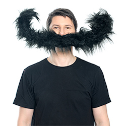 'I Moustache You a Question'