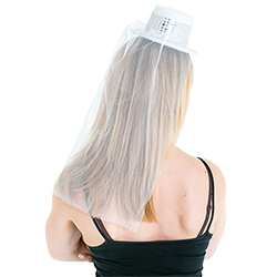 Back view of Top Hat with Veil
