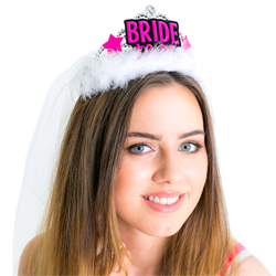 Close up of the Bride-to-Be tiara and veil